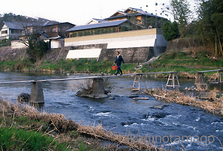 61) 多田院の流れ橋 猪名川