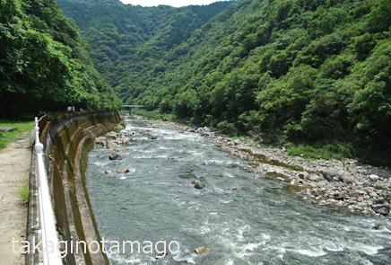 武庫川渓谷に沿った福知山線(旧線)跡