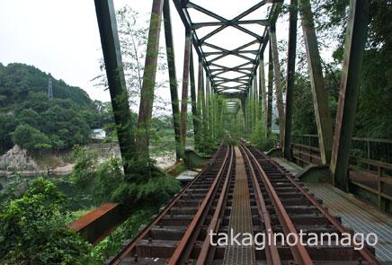 伸びた竹や蔓草に覆われる鉄橋