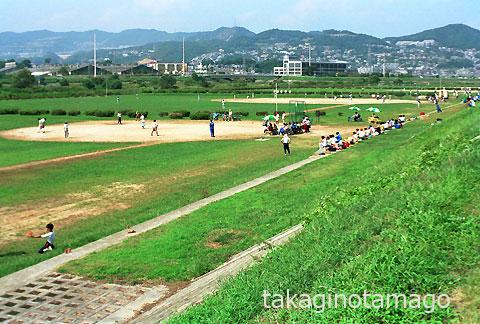 利用者で賑わう河川公園の野球場