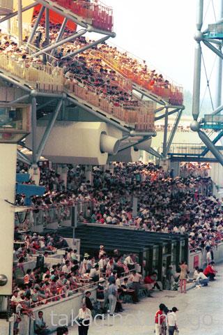 お祭り広場 観覧席から象まつりを見る大勢の観客