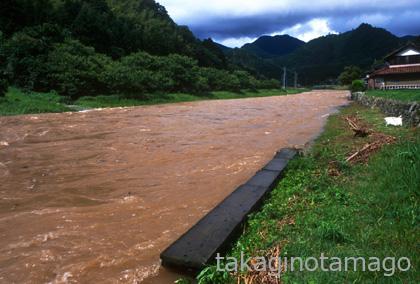 大水が出たときの流れ橋