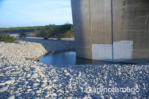 洗掘によって生じた橋脚回りの穴