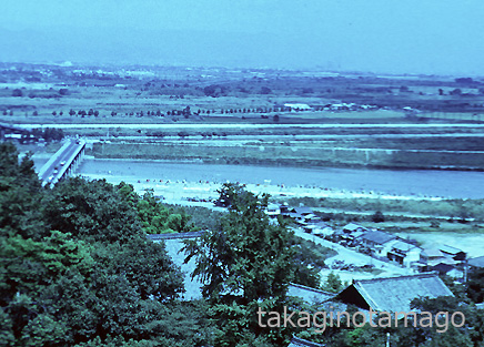 男山から見た八幡水泳場