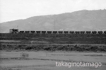 築堤上をゆくトロッコ列車