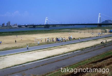 豊里大橋付近の淀川河川敷